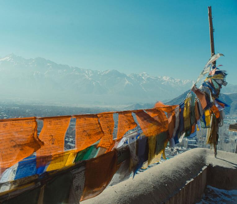 Von Liebesgurus und dem Dalai Lama: Unterwegs im Norden Indiens