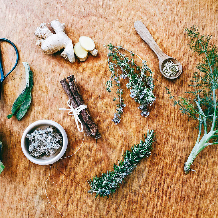 Recipes »The Power of Medicinal Plants Part 3«