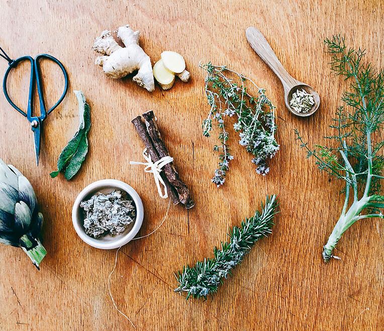 Kräuterküche Teil 3 – Die Heilkräfte der Natur