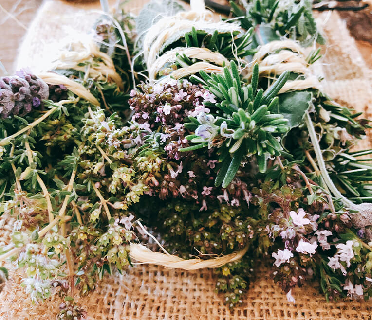 Herb Special Part 1 – All good things come from nature