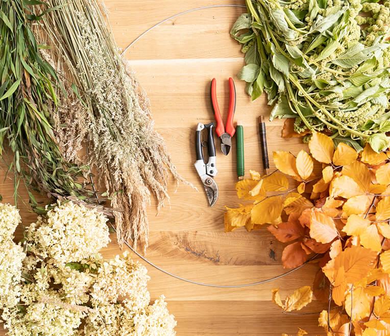 Wie wir den Herbst sehen