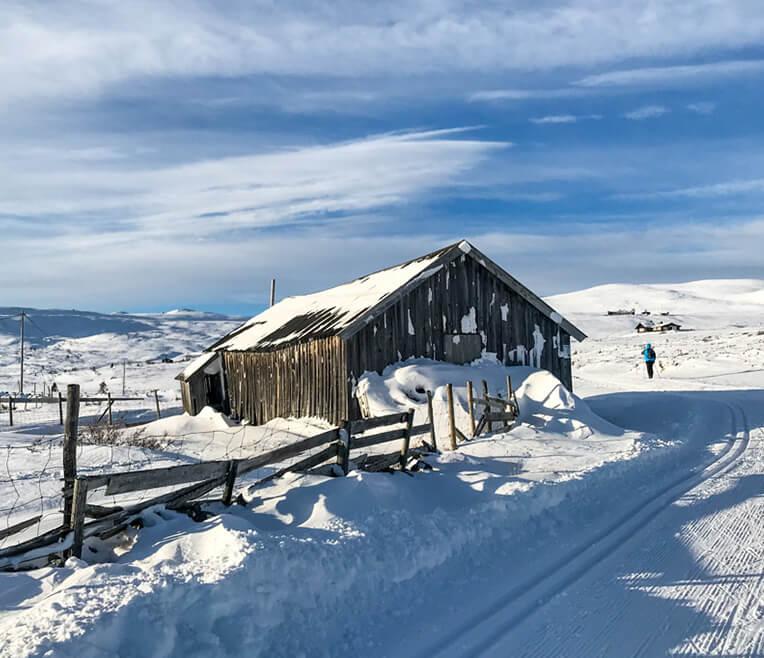 Winter in Norwegen – Die Lieblingssaison der Skandinavier