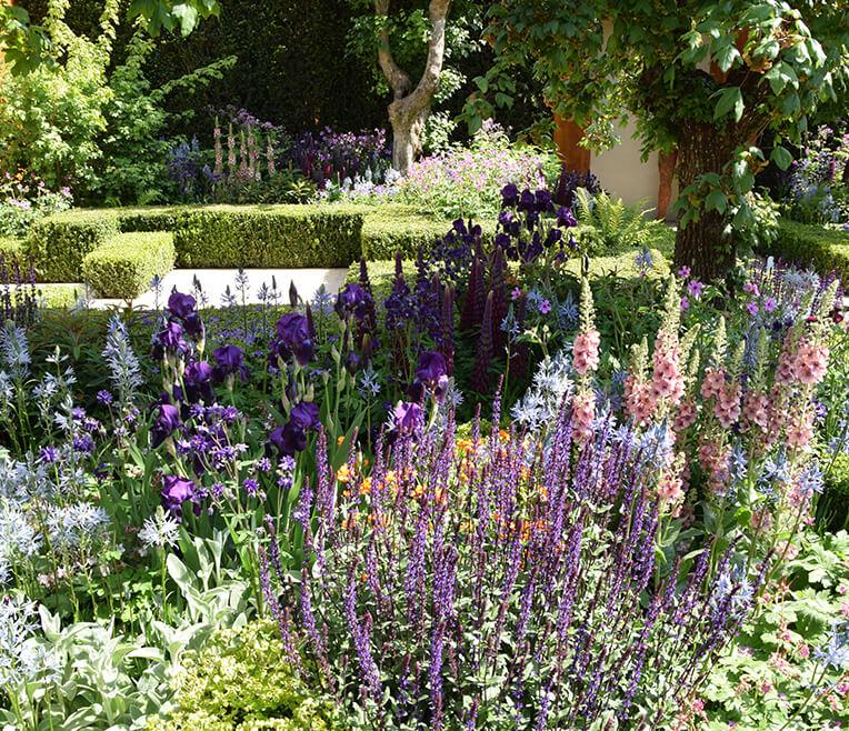 Im Olymp des Gärtnerns – Die Chelsea Flower Show