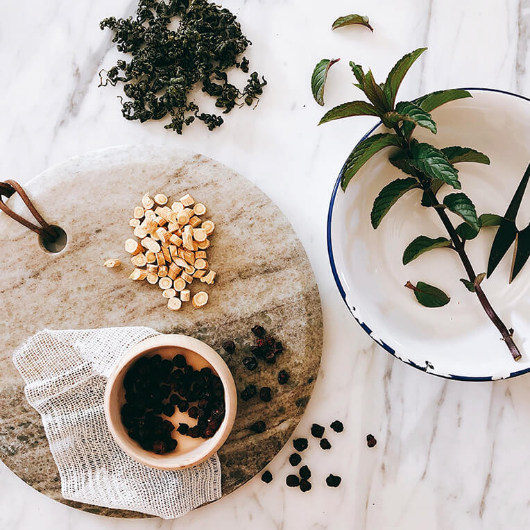 Recipes »The Power of Medicinal Plants Part 2«