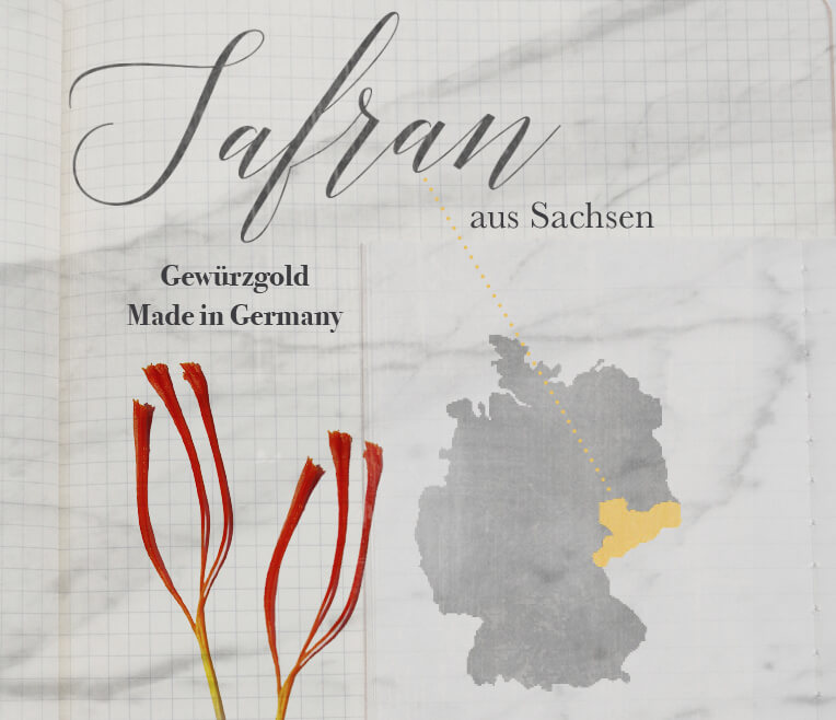 Saffron from Saxony – Precious Spice made in Germany