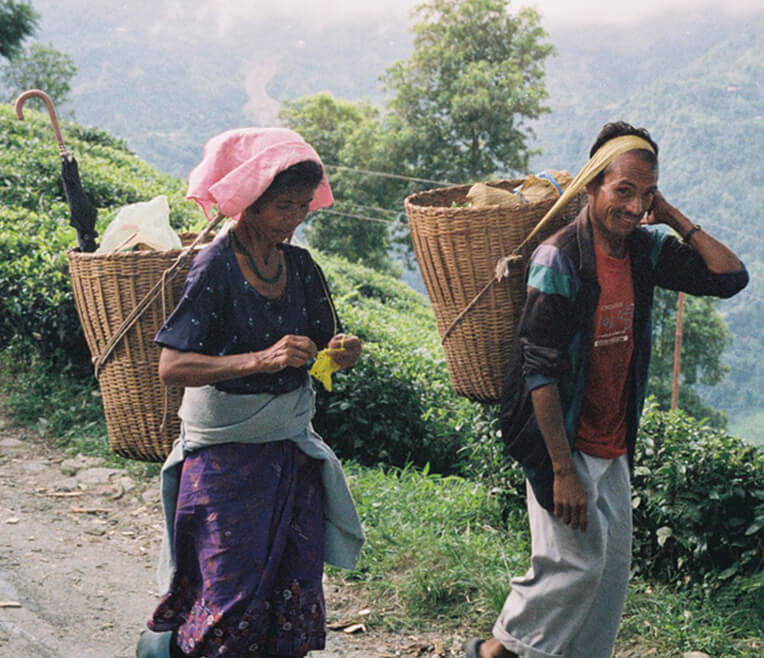 Tee in Indien